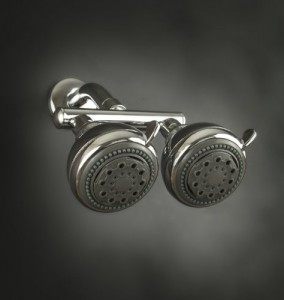 neptune dual shower head